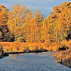 Autumn Gold by Lesliebc