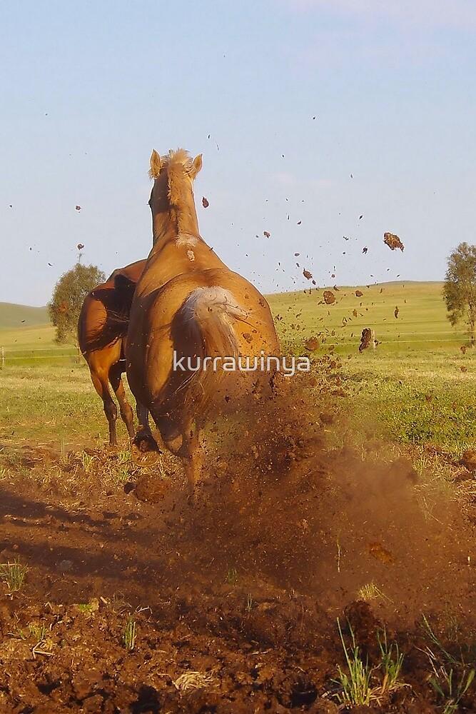 Hoon'en Horse by Penny Kittel