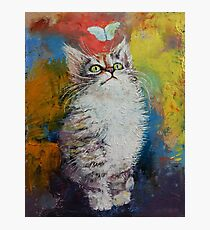 Kitten and Butterfly Photographic Print