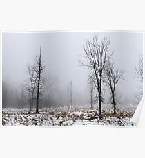 In the Fog Poster