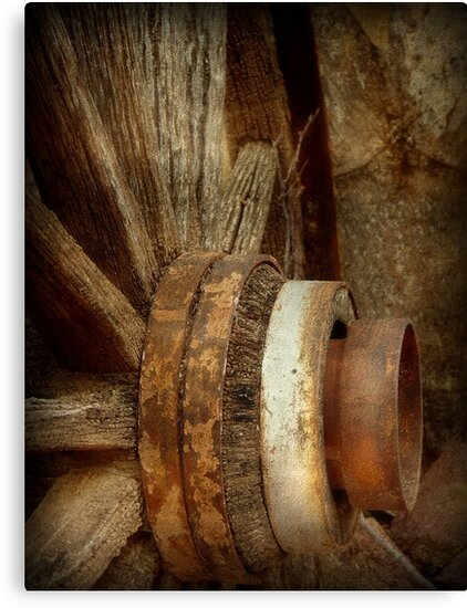 Wagon Wheel by Lucinda Walter