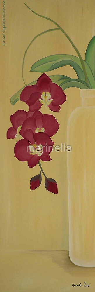 Orchide in a vase by Marinella  Owens
