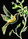 Reflections of Green - Hummingbird by Linda Callaghan