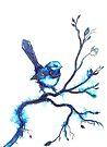 Simply Blue - Wren  by Linda Callaghan