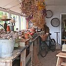 The Potting Shed by John Thurgood