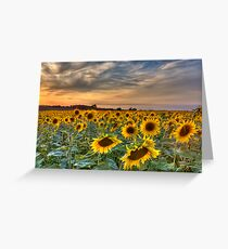 when the sun goes down... Greeting Card
