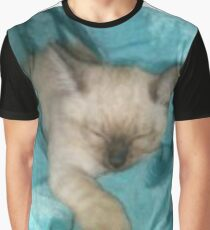 Satin Kitty  Graphic T-Shirt