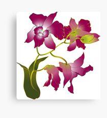 Beautiful purple orchid branch Canvas Print