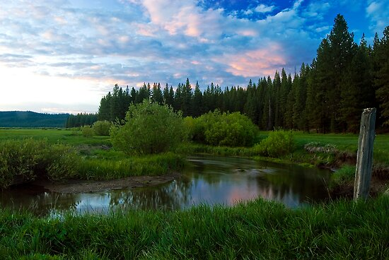 Spring creek by ToddDuvall