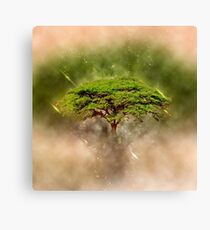 Digitally enhanced image of an Umbrella Thorn Acacia (Acacia tortilis).  Canvas Print