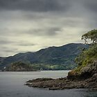 Bay of Islands, New Zealand #4 by Elaine Teague