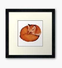 Red Fox Art Framed Print