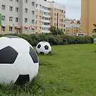 soccer balls on the green lawn by mrivserg