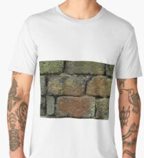 rough brick Old brickwork Men's Premium T-Shirt