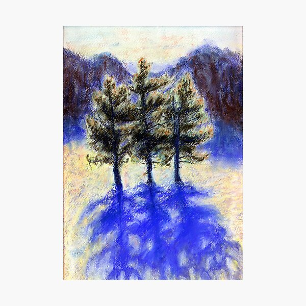 Three Pines. Snow in Virginia Photographic Print