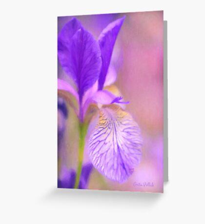 Iris in Pastel Greeting Card