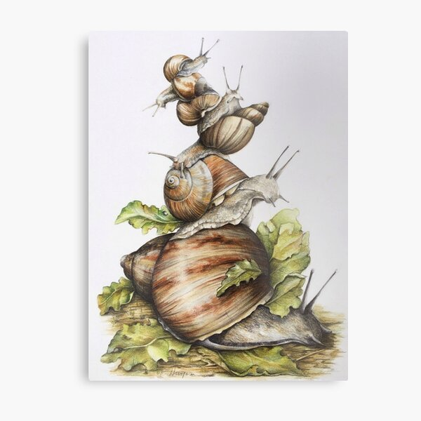 The small worlds Metal Print