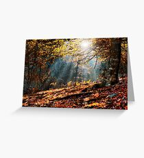 Autumn forest in Spain Greeting Card