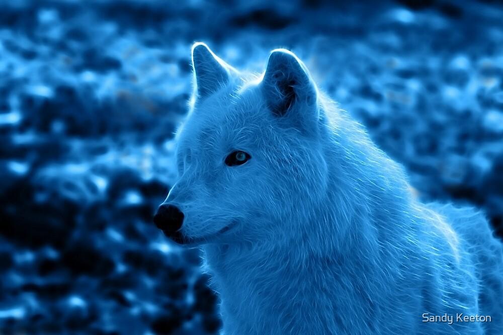 Wolf in Blue by Sandy Keeton