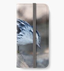 black and white warbler iPhone Wallet