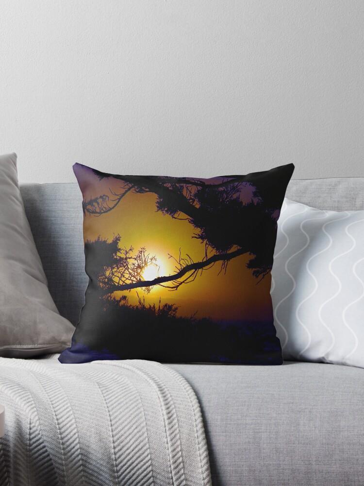 Golden Coastal Sunset by LorrieM