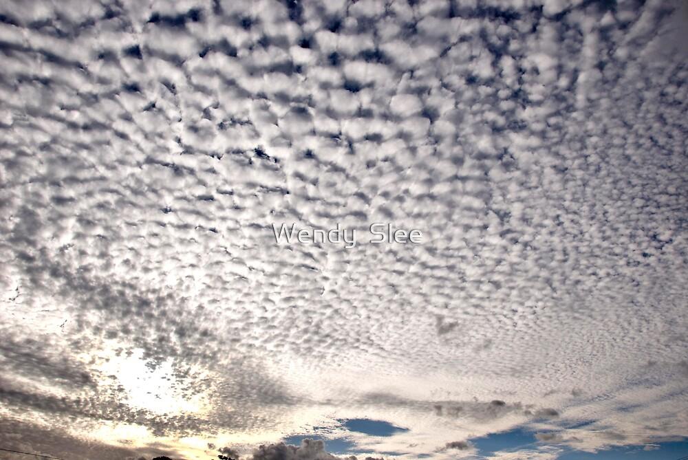 Clouds Fascinate Me by Wendy  Slee