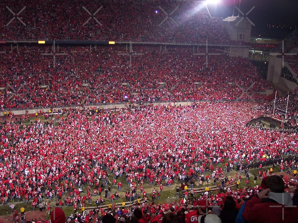 Ohio State vs. Michigan - Nov. 2006 - The victory!  by rmcbuckeye