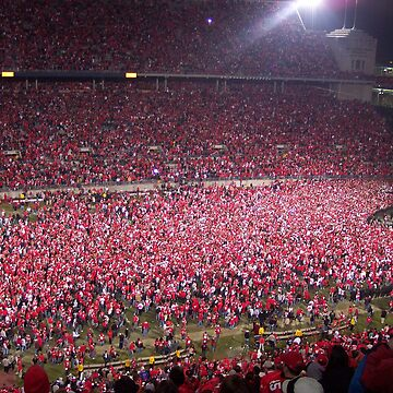 Ohio State vs. Michigan - Nov. 2006 - The victory!  by rmcbuckeye