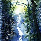 West Riding Waterfall by Glenn Marshall