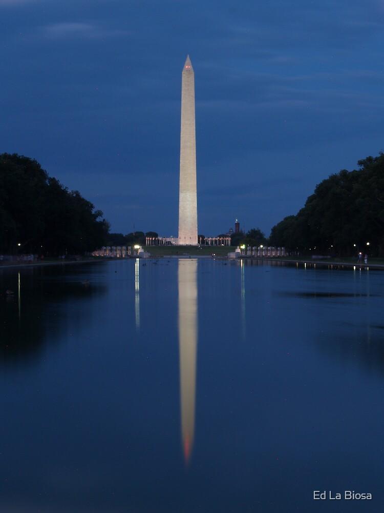 Washington D.C Monument at the pond by labiosa