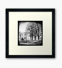 Gostwyck, Northern Tablelands, New South Wales, Australia Framed Print