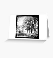 Gostwyck, Northern Tablelands, New South Wales, Australia Greeting Card