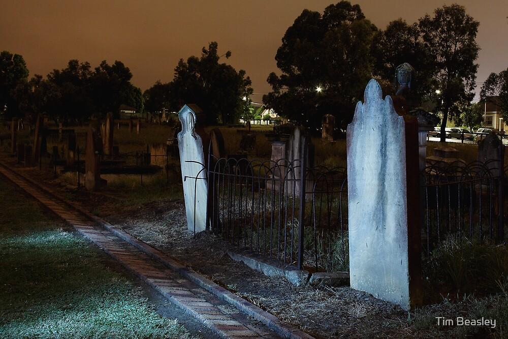Moonlit Gravestones by Tim Beasley