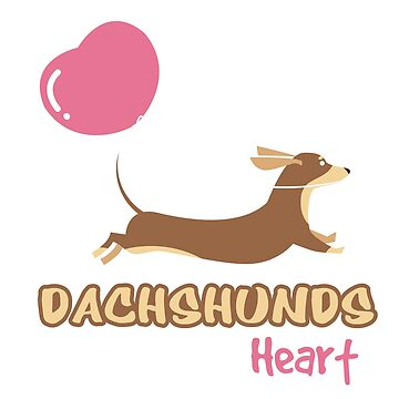 Dachshund steal my heart by mydachshund