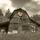 Old Barn by Stephen  Van Tuyl