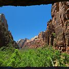 Zion Canyon Seen from the Weeping Rock by Yair Karelic