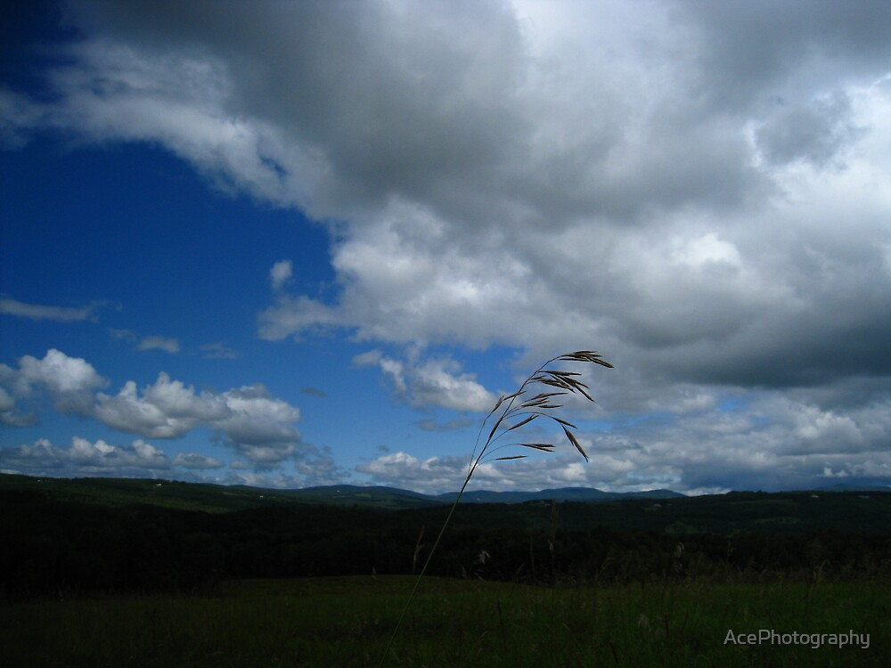 Wind by AcePhotography