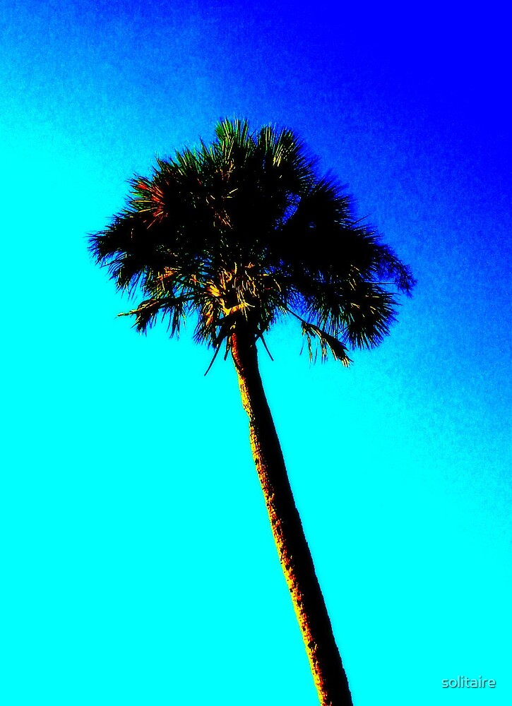 Palm Tree on Sky by solitaire