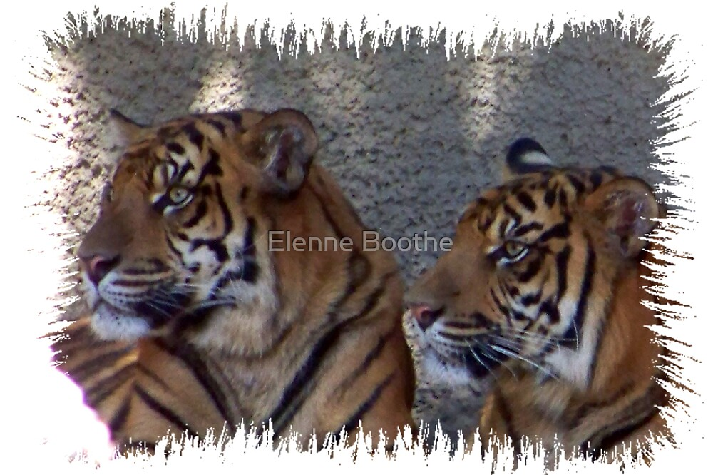 We love you by Elenne Boothe