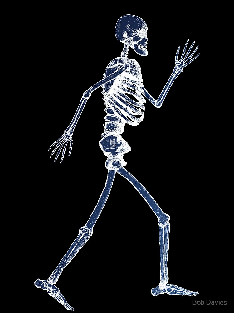 Handdrawn Skeleton X-Ray by Bob Davies