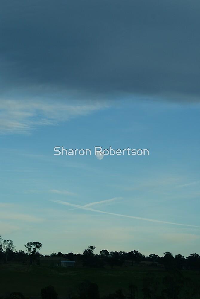 Morning Moon by Sharon Robertson