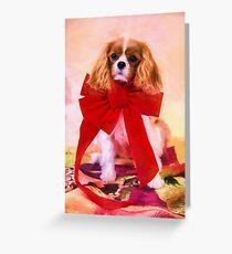 Christmas Joy Of A Cavalier King Charles Greeting Card