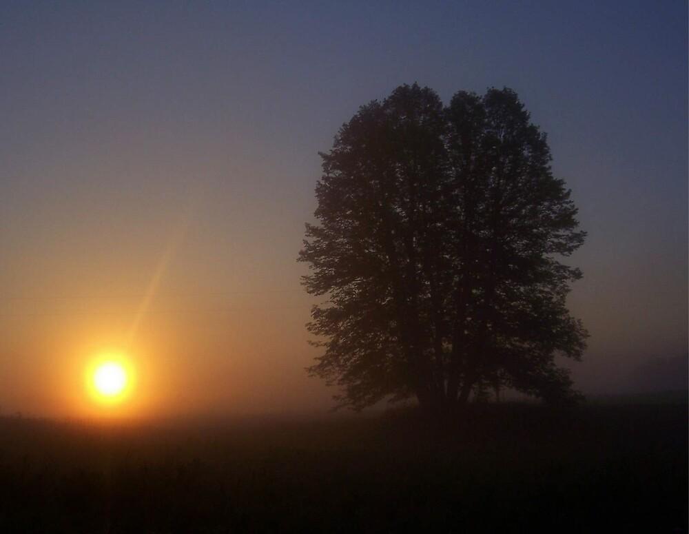 The Rise Through The Fog by babyangel