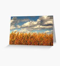 Prairie Gold!!! Greeting Card