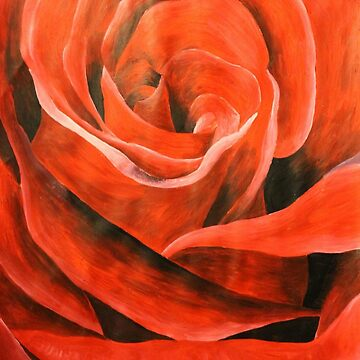 Red rose  by naasirahramjan