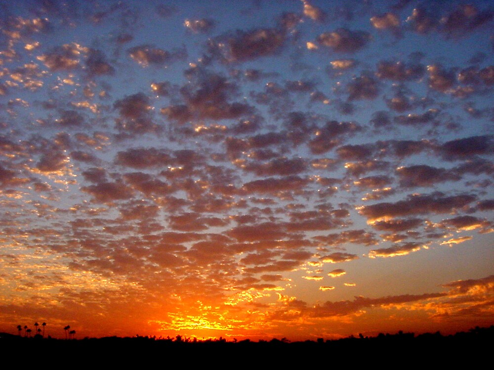 California Sunset, Fire to the East by Liz Wear