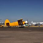 Avalon Airshow,Australia 2017-2 Antonovs by muz2142
