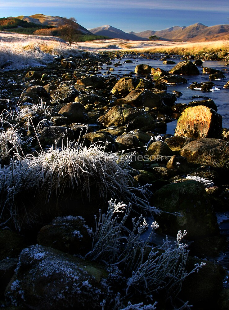 Frosted Grass - Glen kinglass by David Hutcheson