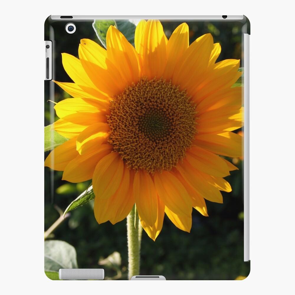 Botanik 1 iPad-Hülle & Skin
