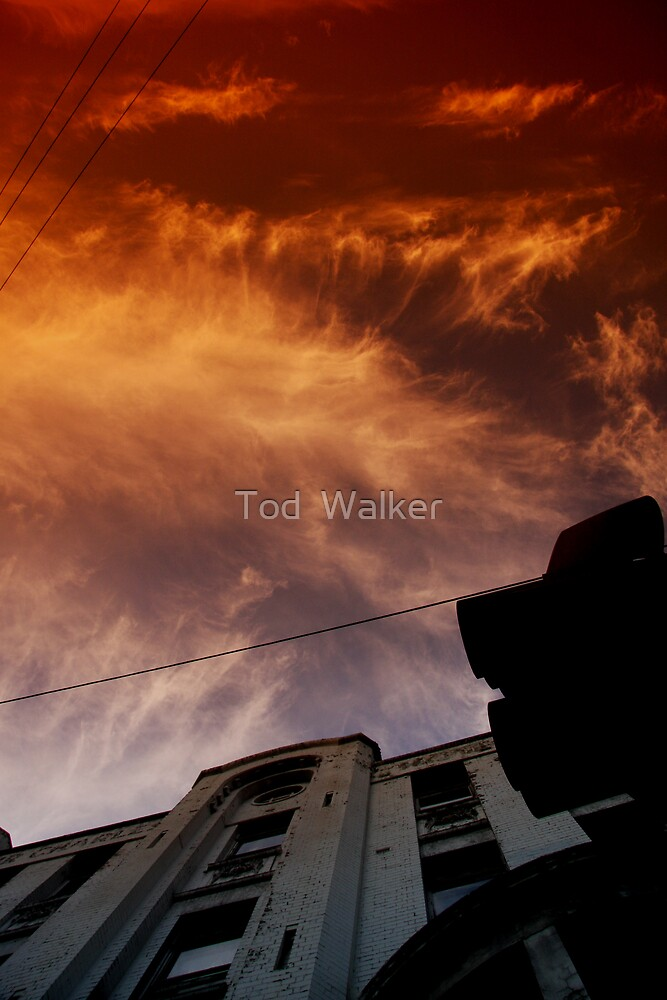 my work looks good in this light by Tod  Walker